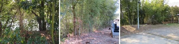 班渓寺(嵐山町)墓地西縁~本堂後方