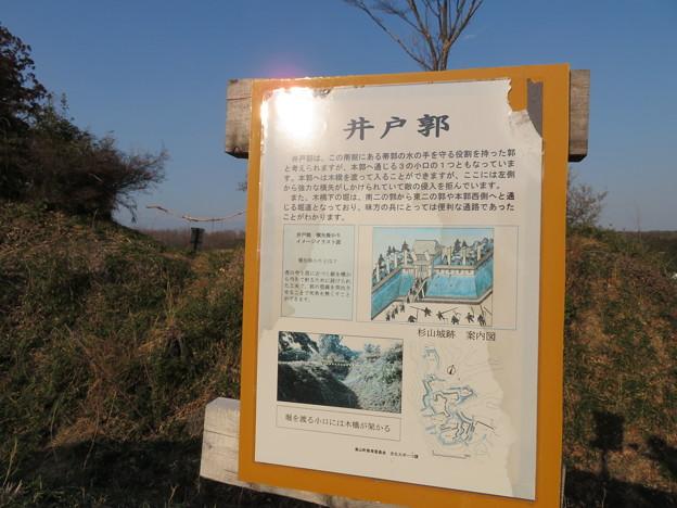 杉山城(嵐山町)井戸郭