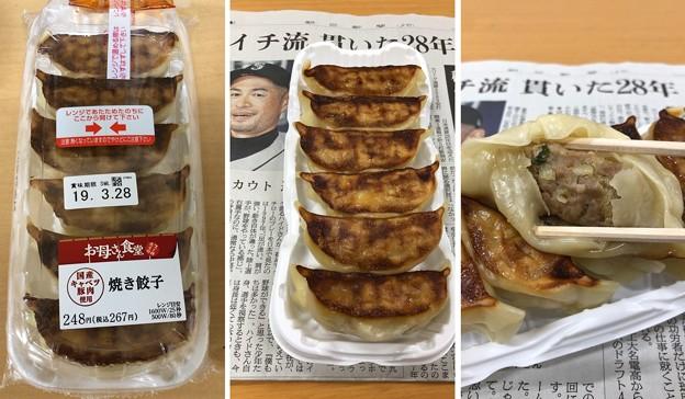 ファミマ焼き餃子