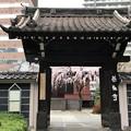 Photos: 善性寺(東日暮里)山門