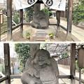Photos: 善性寺(東日暮里)不二大黒天像