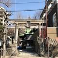 Photos: 小野照崎神社(下谷)