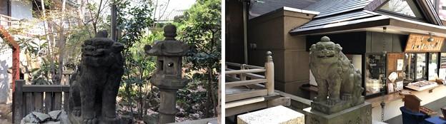 小野照崎神社(下谷)狛犬