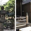 Photos: 小野照崎神社(下谷)狛犬
