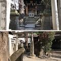 Photos: 小野照崎神社(下谷)織姫社・稲荷社
