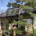 Photos: 海禅寺(台東区)本堂
