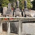 Photos: 海禅寺(台東区)