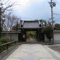 Photos: 興聖寺(上京区)山門