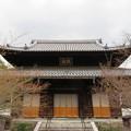 Photos: 興聖寺(上京区)本堂