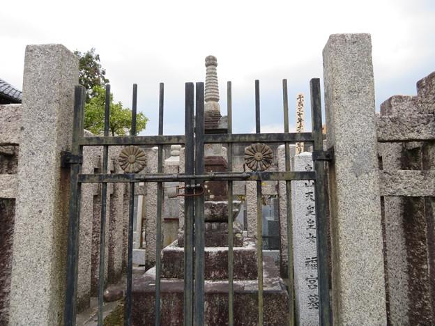 興聖寺(上京区)東山天皇皇女 福宮墓