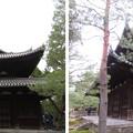 Photos: 大徳寺(京都市北区)仏殿