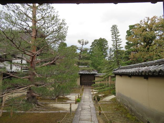大徳寺塔頭(京都市北区)真珠庵