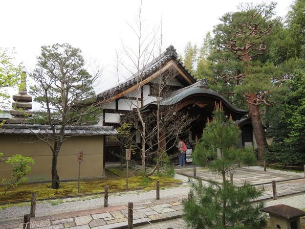 大徳寺塔頭(京都市北区)大仙院