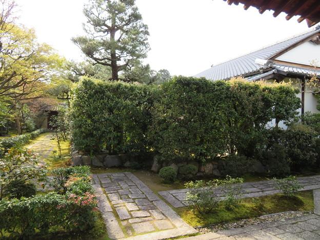 大徳寺塔頭(京都市北区)大光院