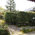 Photos: 大徳寺塔頭(京都市北区)大光院