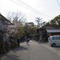 Photos: 今宮神社(京都市北区)参道
