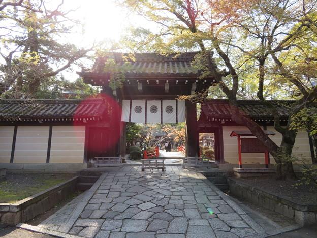 今宮神社(京都市北区)東門