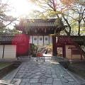 Photos: 今宮神社(京都市北区)東門