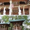 今宮神社(京都市北区)織田稲荷社