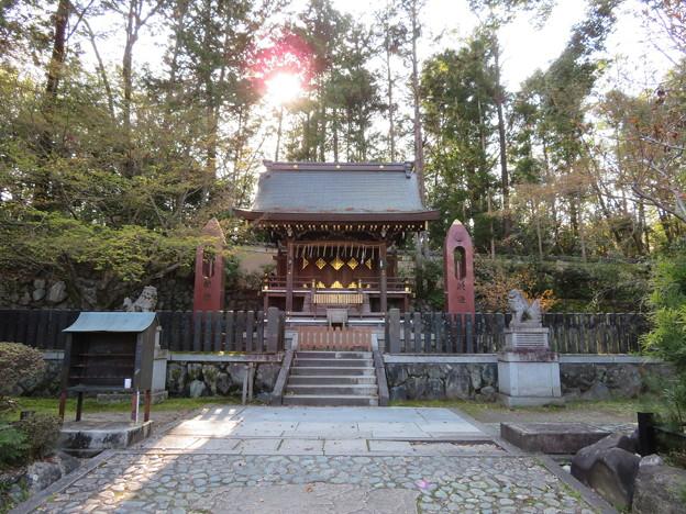 今宮神社(京都市北区)織姫神社
