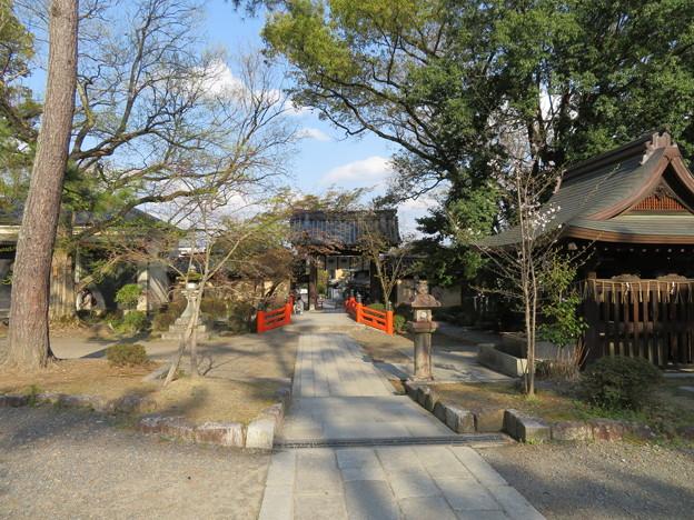 今宮神社(京都市北区)