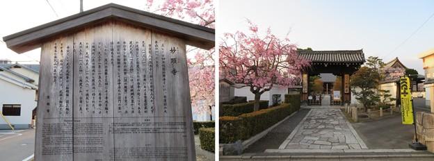 妙顕寺/三好筑前屋敷考察地(上京区)