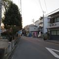 Photos: 応仁の乱 東陣(上京区)西を見る