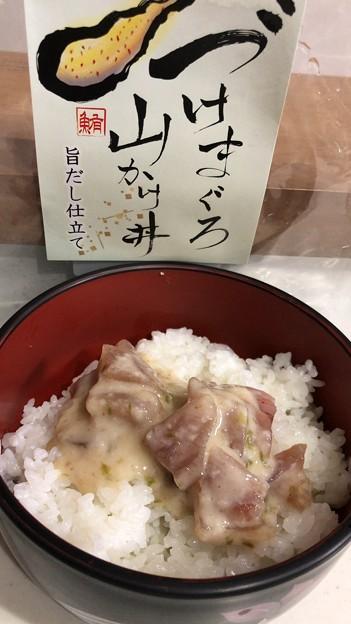 こんなん>゜))))彡