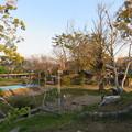 Photos: 淀城天守台(伏見区淀本町)より本丸