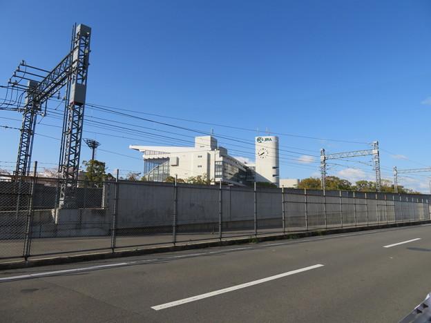 京都競馬場(伏見区)