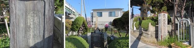 Photos: 伏見戦争淀千両松の戦いの碑(伏見区)