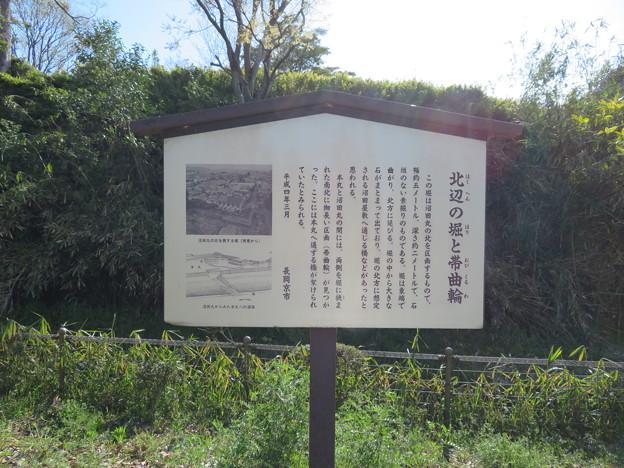 勝竜寺城(長岡京市)帯郭