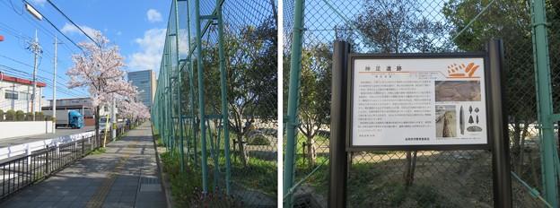 神足遺跡(長岡京市)
