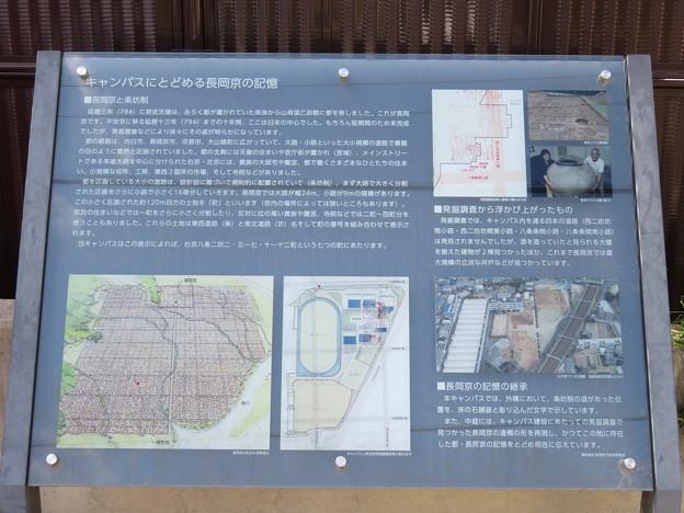 Photos: 立命館中・高校(長岡京市)