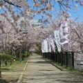 19.04.09.長岡天満宮(長岡京市)
