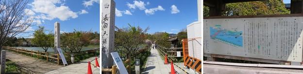 長岡天満宮(長岡京市)