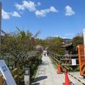Photos: 長岡天満宮(長岡京市)