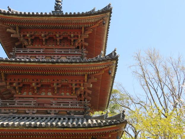 Photos: 19.04.09.宝積寺(乙訓郡大山崎町)三重塔