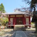 Photos: 宝積寺(乙訓郡大山崎町)閻魔堂