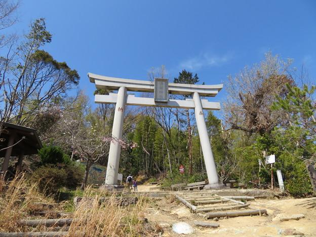 Photos: 天王山 山崎城(大山崎町)酒解神社 一の鳥居(大鳥居)