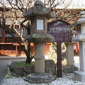 Photos: 片埜神社(枚方市)石造灯籠