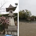 Photos: 大坂城(大阪府大阪市中央区)東大番頭小屋跡