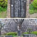 Photos: 大坂城(大阪府大阪市中央区)残念石