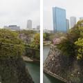 Photos: 大坂城(大阪府大阪市中央区)山里口出桝形北西隅より