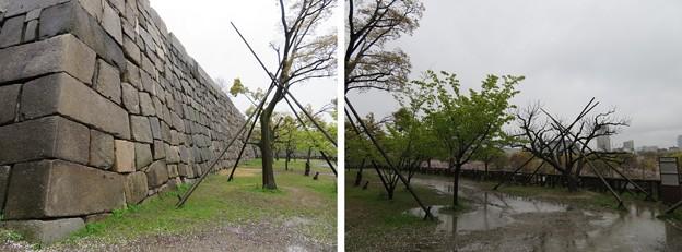 大坂城(大阪府大阪市中央区)隠し曲輪