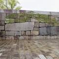 Photos: 大坂城(大阪府大阪市中央区)山里門