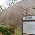 Photos: 大坂城(大阪府大阪市中央区)京橋口門・肥後石