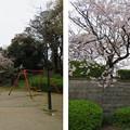 Photos: 三光神社・真田丸跡(大阪市天王寺区)