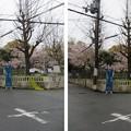 三光神社・真田丸跡(大阪市天王寺区)北東