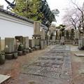 Photos: 一心寺(大阪市天王寺区)会津藩士墓地